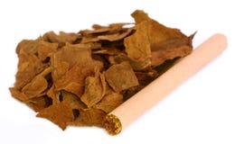 Feuilles sèches de tabac pour faire la cigarette photographie stock