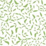 Feuilles sans couture de vert de modèle Calibre plat de vecteur Photographie stock libre de droits