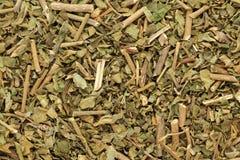 Feuilles sèches organiques de Kalmegh ou de chiretta (paniculata d'Andrographis) Photos stock