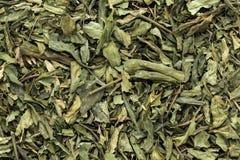 Feuilles sèches organiques de Kalmegh ou de chiretta (paniculata d'Andrographis) Photographie stock