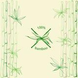 Feuilles tirées par la main de bambou de tiges croisées Image stock