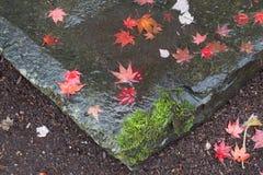 Feuilles tombées de rouge sur une roche de jardin Photo stock