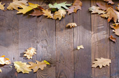 Feuilles tombées sur le toit en bois Photo stock