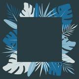 Feuilles tropicales bleues de place Vecteur plat exotique illustration libre de droits
