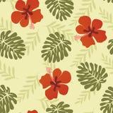 Feuilles tropicales de modèle hawaïen - illustration Image stock