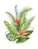 Feuilles tropicales et fleurs de bouquet d'aquarelle d'isolement sur le fond blanc illustration libre de droits