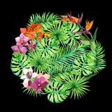 Feuilles tropicales, fleurs exotiques Configuration ronde watercolor photographie stock