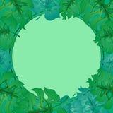 Feuilles tropicales lumineuses Images libres de droits