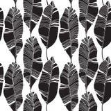 Feuilles tropicales, modèle de jungle Modèle sans couture, détaillé, botanique Fond de vecteur Photos libres de droits