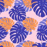 Feuilles tropicales sur un fond rose-clair Image stock
