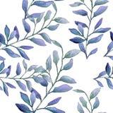 Feuilles vertes de buis d'aquarelle Feuillage floral de jardin botanique d'usine de feuille Modèle sans couture de fond illustration libre de droits