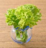 Feuilles vertes de laitue dans un petit vase en verre Photo stock