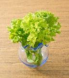 Feuilles vertes de laitue dans un petit vase en verre Photographie stock