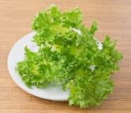 Feuilles vertes fraîches de laitue dans le plat blanc photo libre de droits