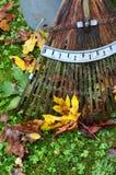 Feuilles vibrantes d'automne avec le râteau en bambou Photographie stock libre de droits