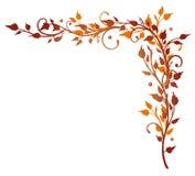 Feuilles, vrille, automne Images libres de droits