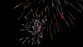 Feux d'artifice éclatant dans le ciel nocturne clips vidéos