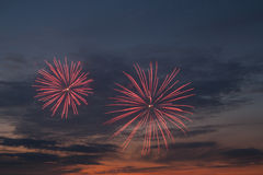 Feux d'artifice au coucher du soleil Photo stock