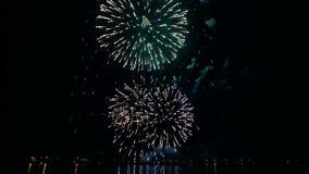 Feux d'artifice colorés dans le ciel de nuit banque de vidéos