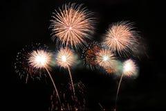 Feux d'artifice colorés de fête sur le fond de ciel nocturne Vacances de célébration photographie stock libre de droits