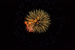Feux d'artifice d'or Photographie stock libre de droits