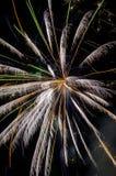 feux d'artifice de fête Photos libres de droits