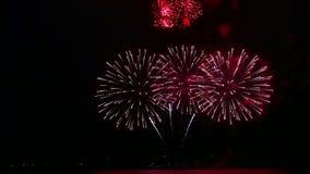 Feux d'artifice de fête multicolores dans le ciel nocturne au-dessus de la rivière Recouvrements de temps banque de vidéos