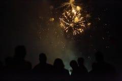 Feux d'artifice de observation de foule Photographie stock libre de droits