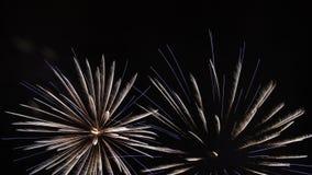 Feux d'artifice lumineux en ciel nocturne Félicitations clips vidéos