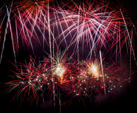 Feux d'artifice quatre Image stock