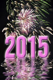 2015, feux d'artifice roses Image stock