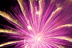 Feux d'artifice roses Photos stock