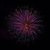 Feux d'artifice sur le quatrième de juillet Photographie stock libre de droits