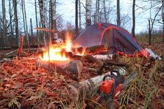 feux de camp photographie stock libre de droits