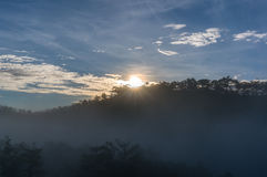18, fevereiro Névoa 2017 de Dalat- sobre o pinho Forest On Sunrise Background e a nuvem beautyful em Dalat- Lamdong, Vietname Fotos de Stock