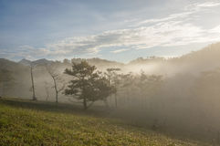 18, fevereiro Névoa 2017 de Dalat- sobre o pinho Forest On Sunrise Background e a nuvem beautyful em Dalat- Lamdong, Vietname Foto de Stock