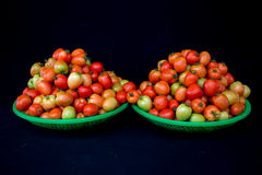 22, fevereiro O tomate 2017 de Dalat- frutifica na cesta plástica verde, fundo preto Fotos de Stock Royalty Free