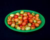 22, fevereiro O tomate 2017 de Dalat- frutifica na cesta plástica verde, fundo preto Imagem de Stock Royalty Free