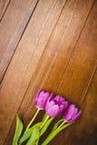 Few beautiful purple flower against wood plank Stock Photos