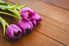 Few beautiful purple flower against wood plank Royalty Free Stock Image