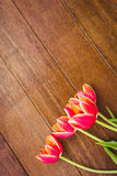 Few beautiful red flowers against wood plank Royalty Free Stock Photos