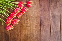 Few beautiful red flowers against wood plank Stock Photos