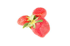 Few berries red strawberries Royalty Free Stock Image