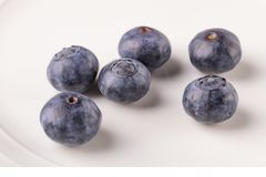 A few blueberries on a white plate close-up stock images