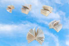 Few book fly in blue sky Royalty Free Stock Image