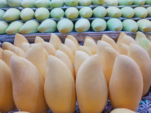 Few bright yellow mangoes in the market stock photo