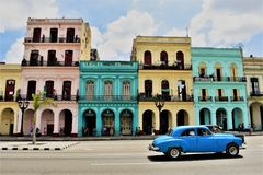Blue, pink, yellow Havana royalty free stock image