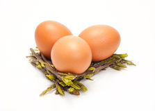 Few chicken eggs. Are isolated on a white background Royalty Free Stock Photography