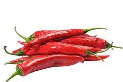 Few chili pepper Stock Image