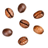 Few coffee beans. Isolated Royalty Free Stock Photo